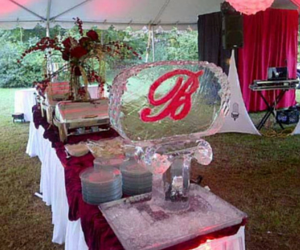 [Image: Feature a customized initial ice sculpture at your wedding. ]